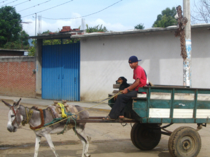 Village transportation